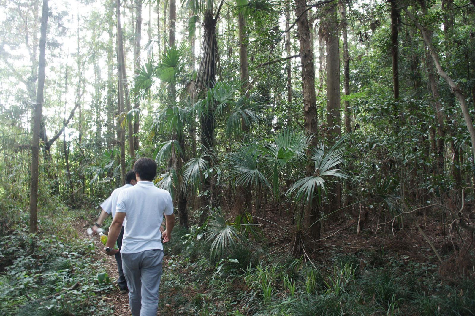 森の現状視察に来ました